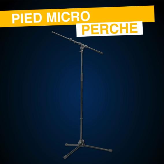 location pied micro perche